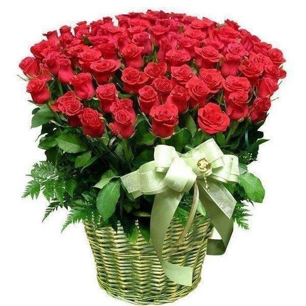 Поздравление букеты роз