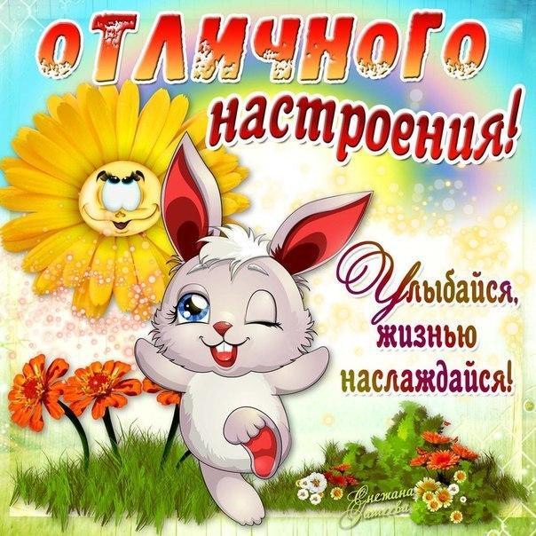 Открытки с пожеланием хорошего дня и отличного настроения