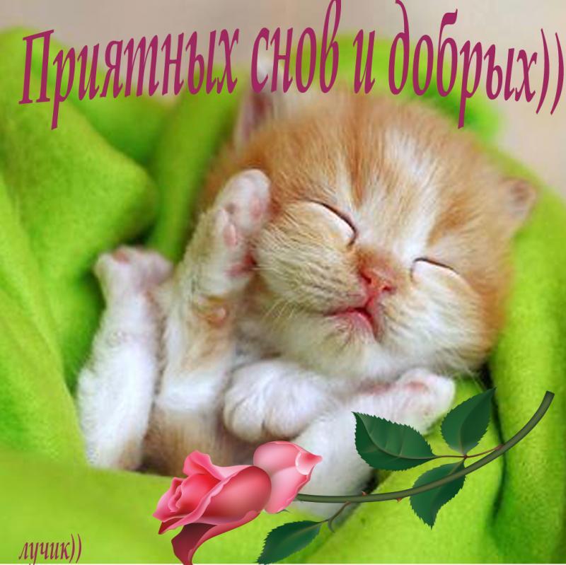 Спокойной ночи красивые и большие открытки