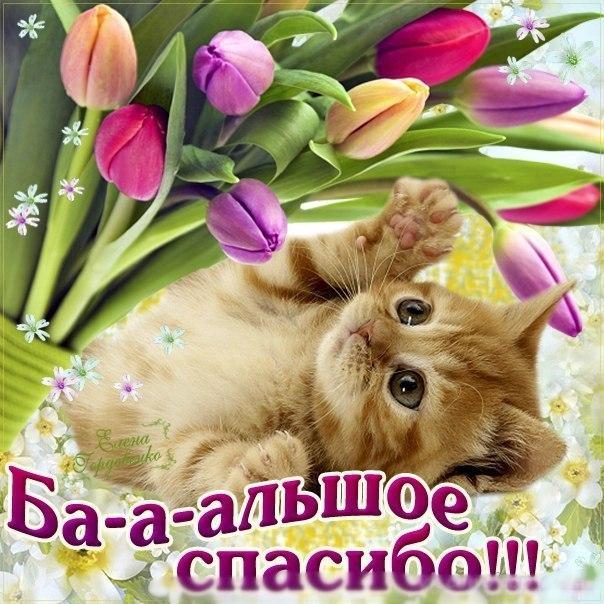 http://kak2z.ru/my_img/img/2015/12/08/7475c.jpg