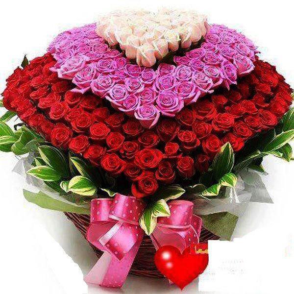 Фото цветы поздравления с днём рождения