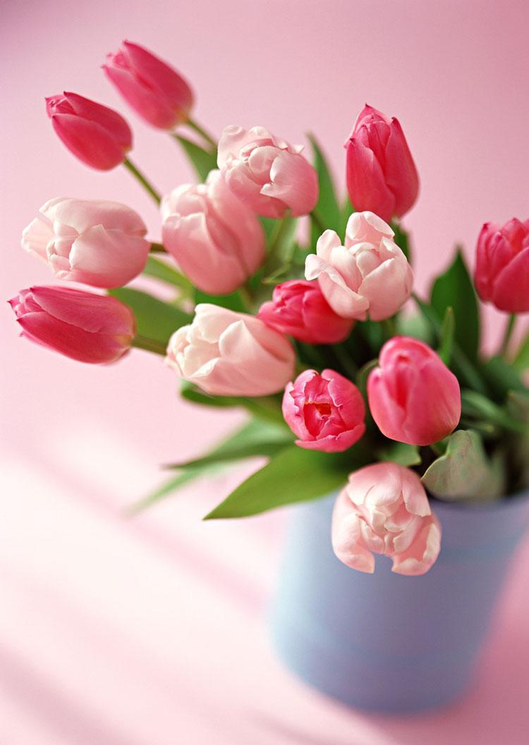 С праздником цветы