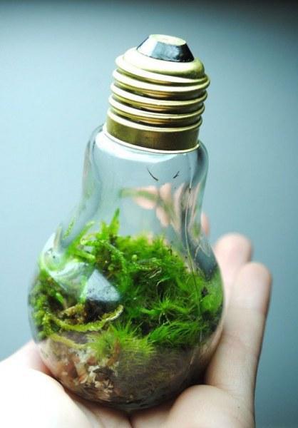 Отличные идеи для использования лампочек - Интересное и необычное