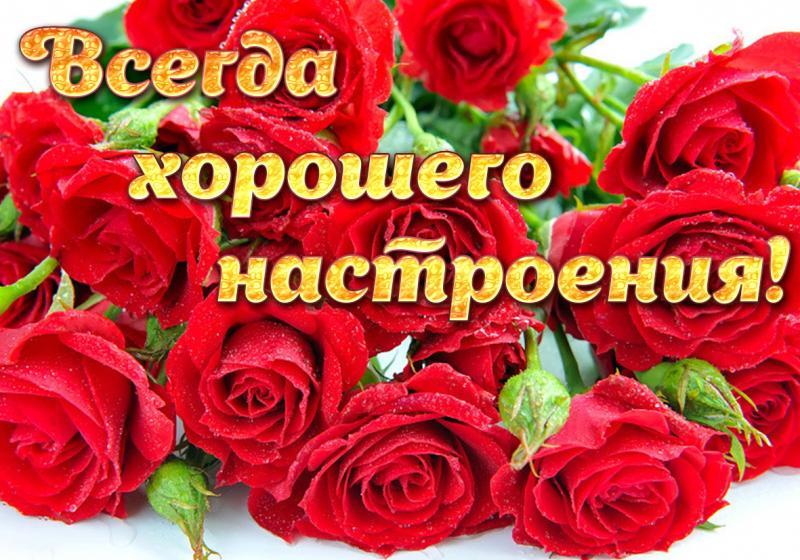 Открытки с розами хорошего настроения