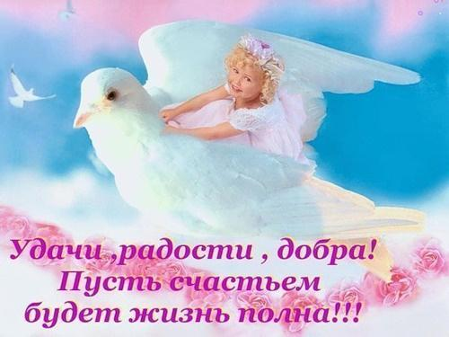 Счастье радость поздравления