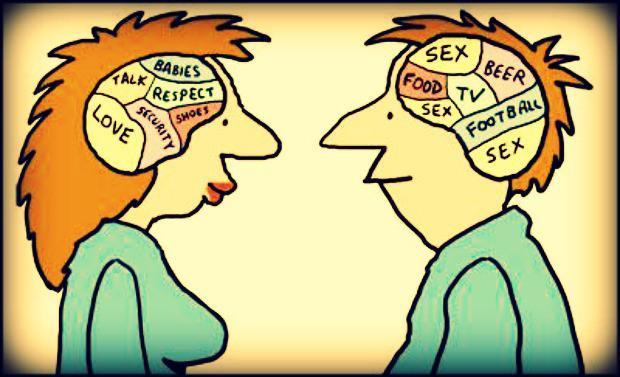 Интеллект и сексуальность в мужчине и женщине
