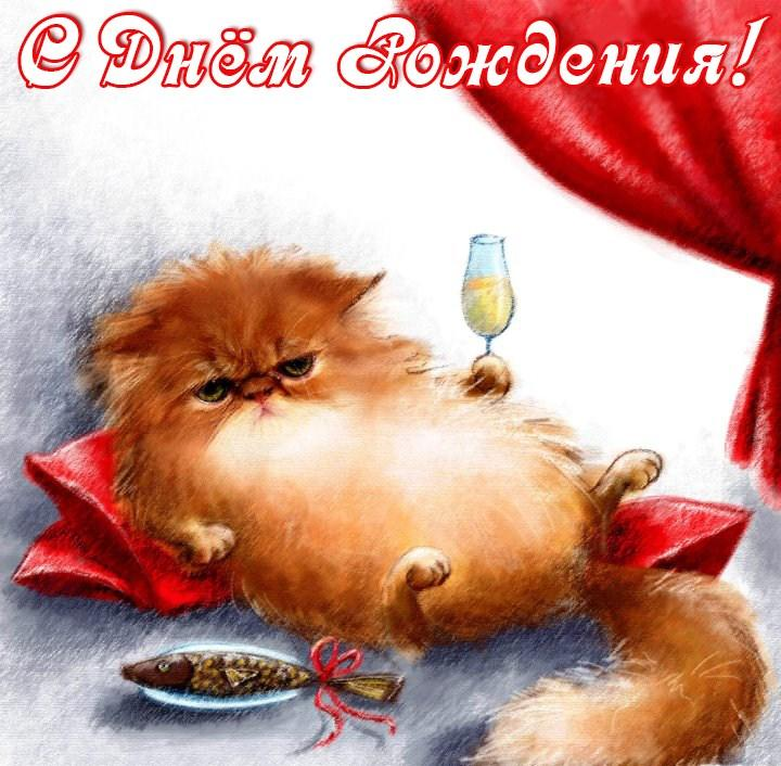 Смешные поздравления от котов 65