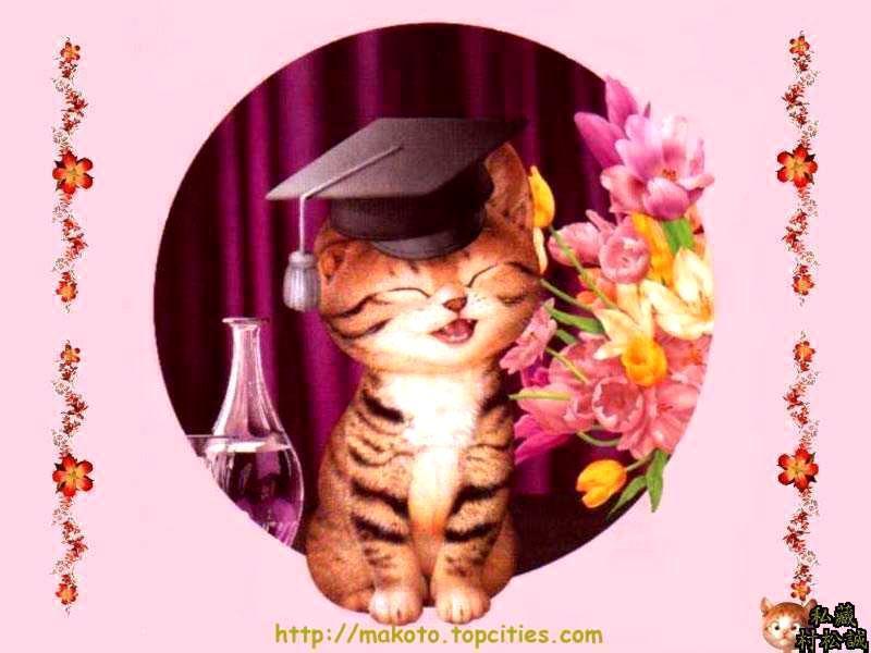 Поздравления с дипломом открытки, открытка день рождение