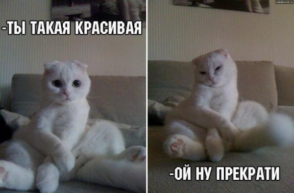 https://kak2z.ru/my_img/img/2016/03/24/f6485.jpg