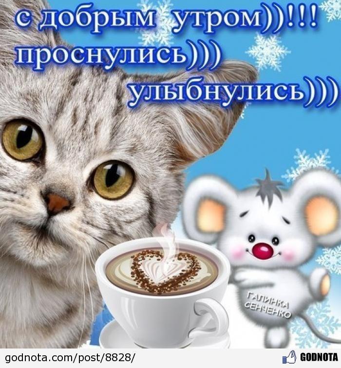 Уже утро просыпайся и улыбайся прикольные картинки