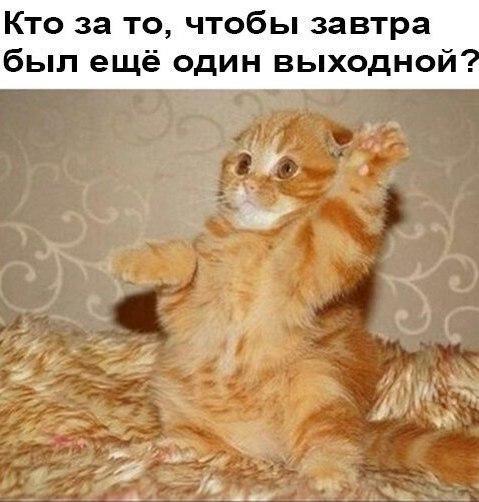 https://kak2z.ru/my_img/img/2016/04/04/11d28.jpg