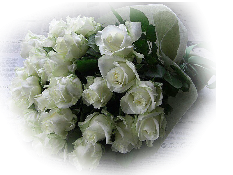 Красиво оформлены, открытки с букетом из белых роз