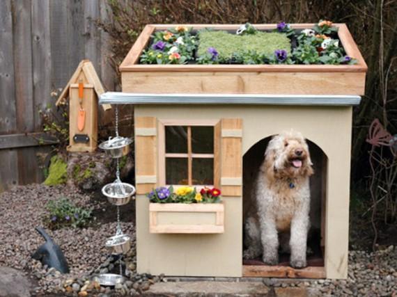 Команда домик для собаки