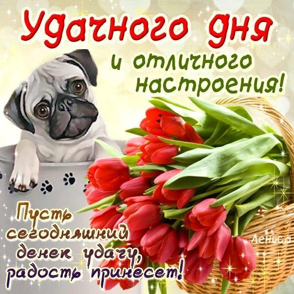 Поздравление к праздник казанской иконы