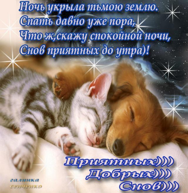 Пожелания доброго утра и ночи любимому