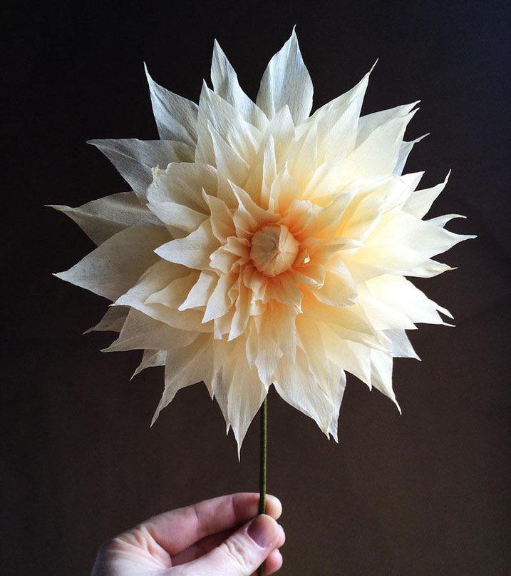 Цветы из бумаги смотреть бесплатно