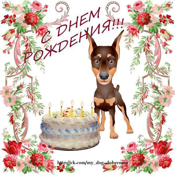 Поздравления с днём рождения от собачки