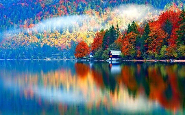 Замечательного осеннего утра картинки