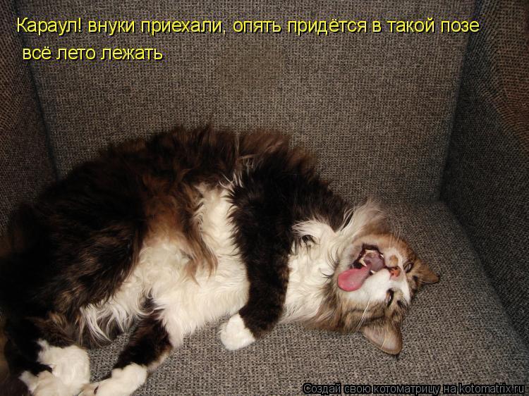 uzhinah-i-zavtrakah-eda-nikogda-ne-konchaetsya