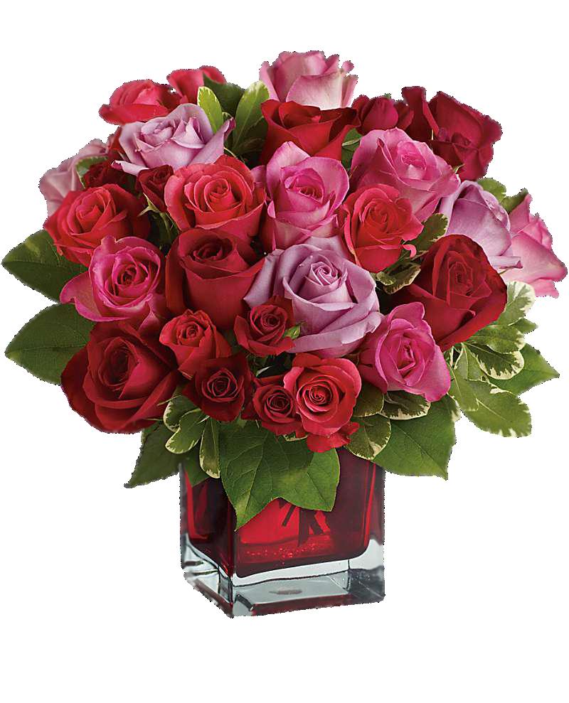 Букеты роз для поздравления картинки, цветов флорид