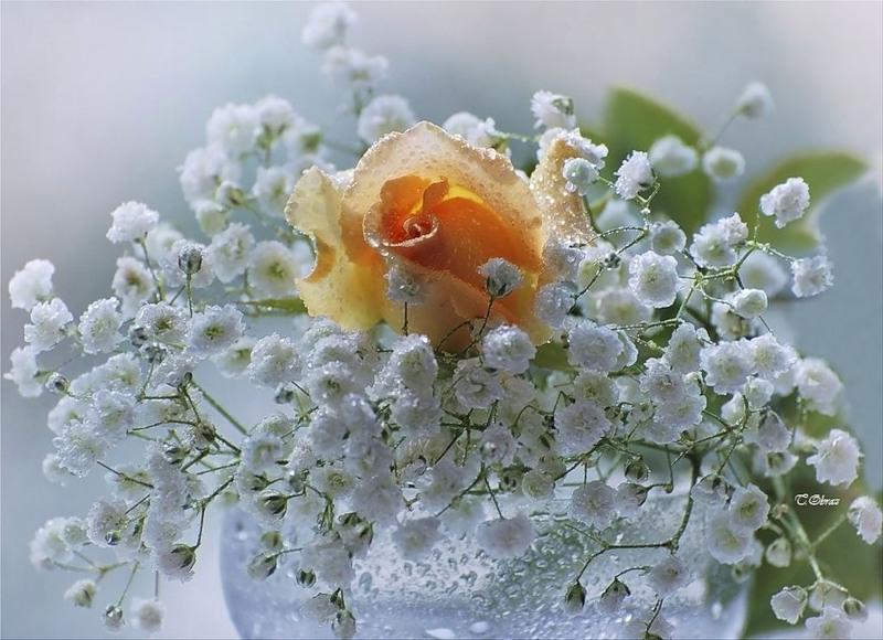Как сделать цветы весенние тебе я подарю
