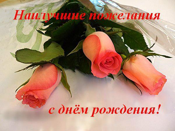Поздравления с днем рождения нина красивые