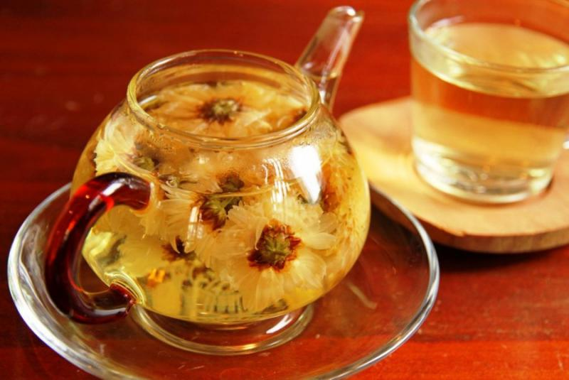 Хризантема чай полезен