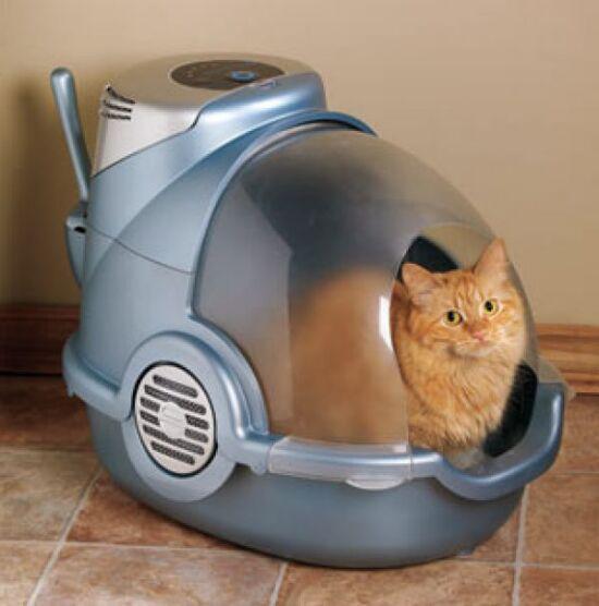 такое как сделать чтобы лоток кота не вонял Гомеопатический Центр одно
