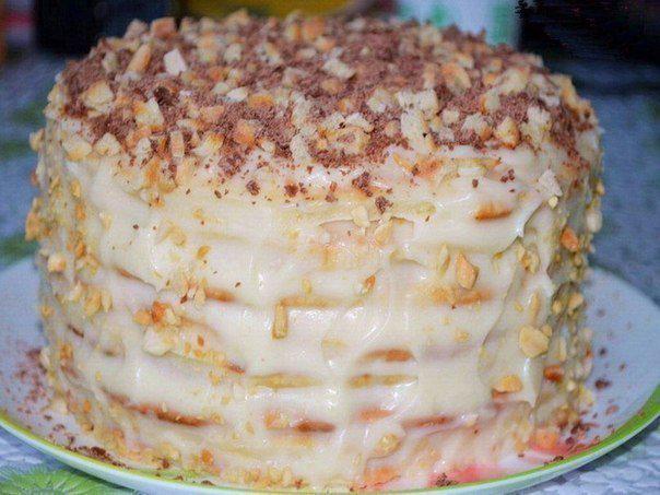 Вкусные торты из творога