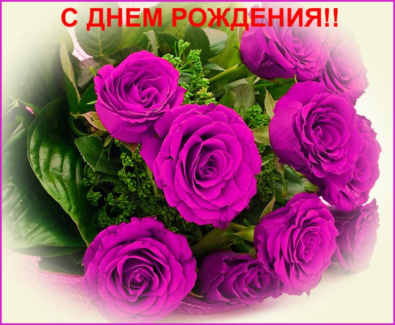 Поздравления с днем рождения зина прикольные