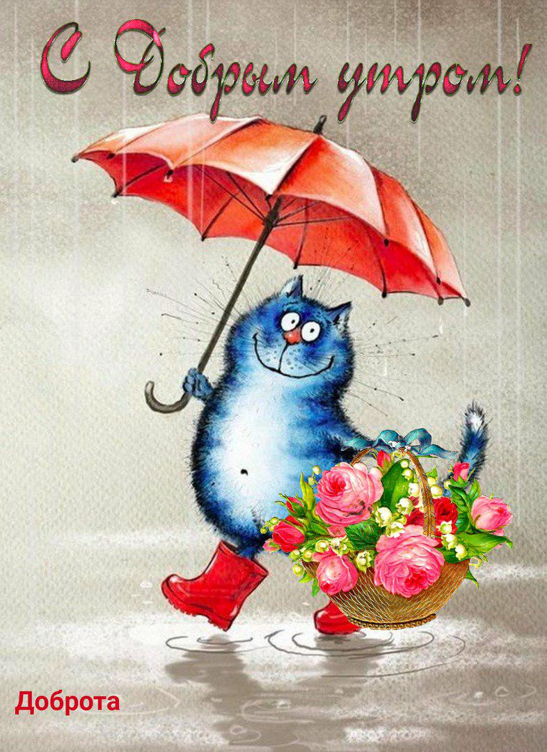 Доброе дождливое утро открытки с надписями, открытки