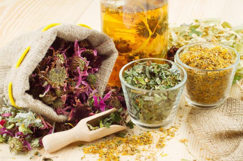Травы для похудения, рецепты травяных сборов