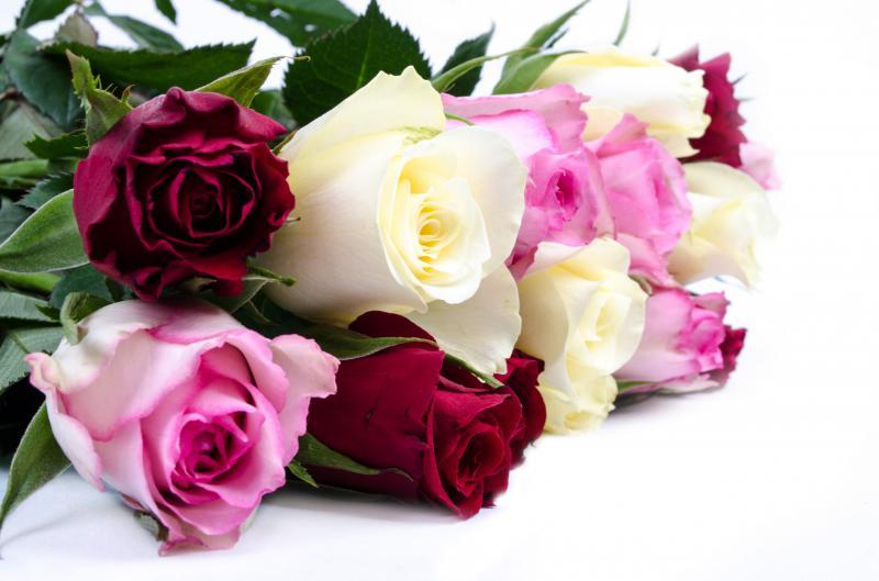 Розы для верочки открытки, рождеством
