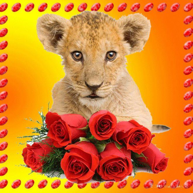 фото день рождения лев роберто