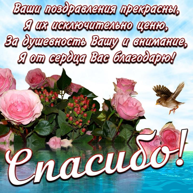 Вечер, спасибо друзья за поздравления картинки красивые