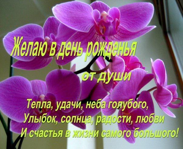 Поздравление с днём рождения венера 33