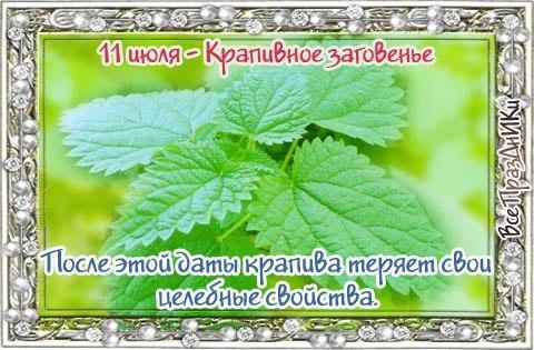 http://kak2z.ru/my_tagimg/img/2015/07/11/abda4.jpg